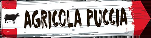 Logo_puccia_big