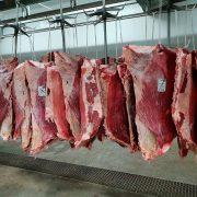Agricola Puccia – Carne Ternera 5