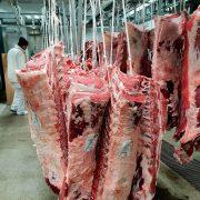 Agricola Puccia – Foto Carne 1