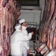 Euroganaderos – Ternera Carne 22