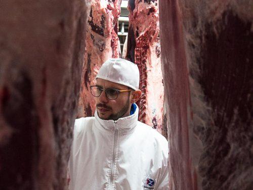 Venta de carne de ternera a distribuidores y mayoristas 14