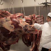 Euroganaderos – Ternera Carne 28