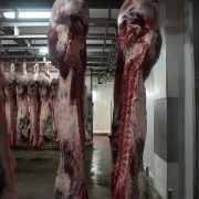 Euroganaderos – Ternera Carne 7