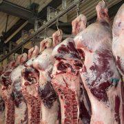 Euroganaderos – Ternera Carne 25