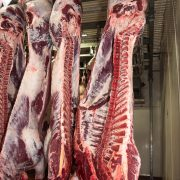Euroganaderos – Ternera Carne 23