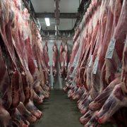 J.G. Global – Carne 6