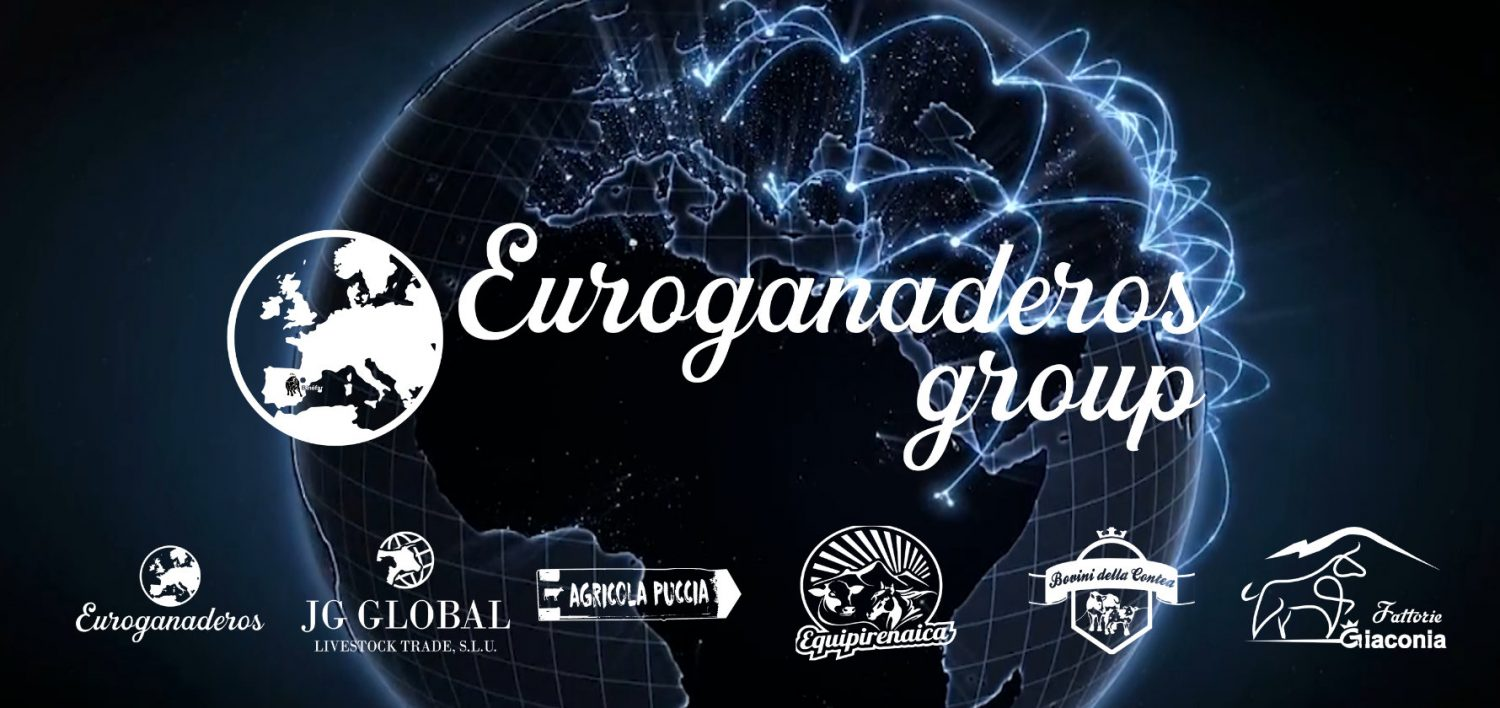 Euroganaderos Group wishes you a Happy New Year