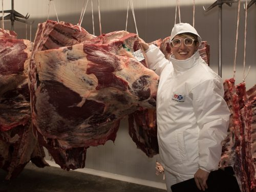 Venta de carne de ternera a distribuidores y mayoristas 36