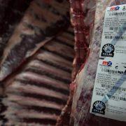 J.G. Global – Carne 2